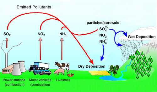 pollutant emissions and deposition processes