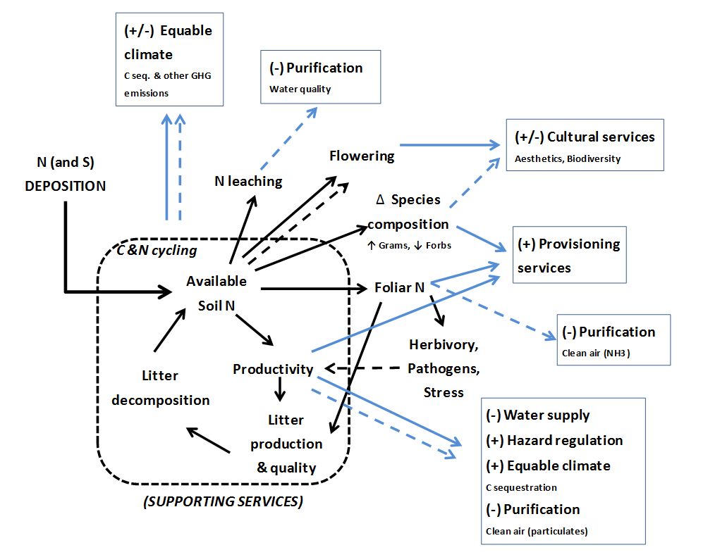 ecosystem services - eutrophication impacts