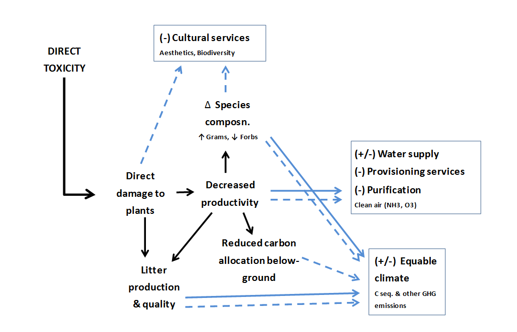 ecosystem services - direct toxicity